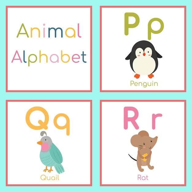 Alphabet animal mignon. lettre p, q, r. pingouin, caille, rat Vecteur Premium