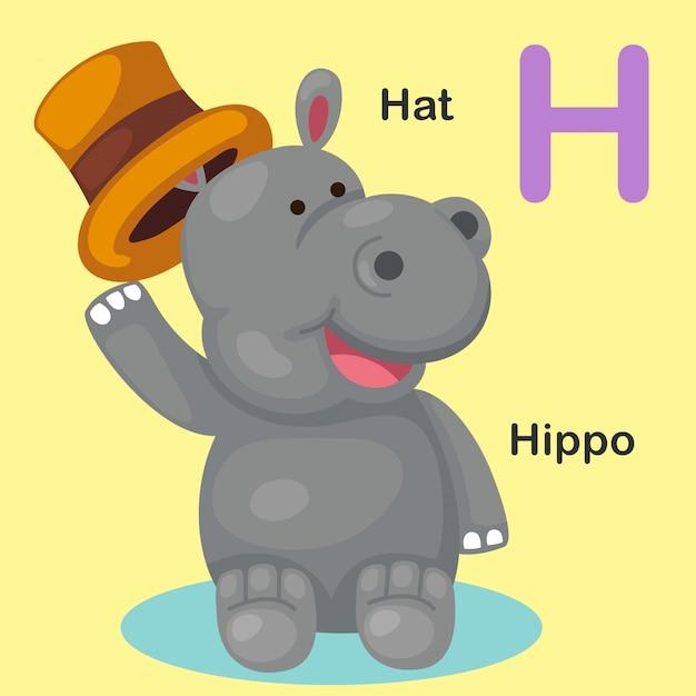 Alphabet des animaux illustration isolé lettre h-hat, hippo Vecteur Premium