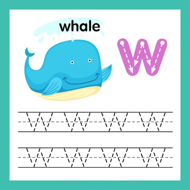 Alphabet w exercice avec illustration de vocabulaire de dessin animé Vecteur Premium