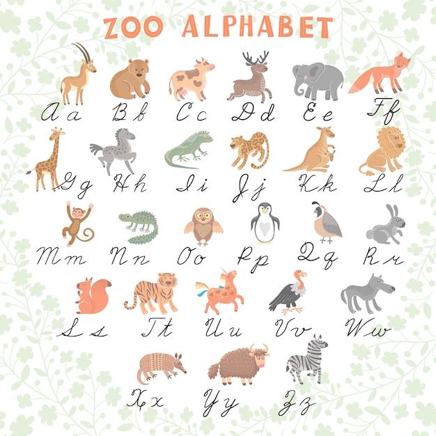 Alphabet de zoo de vecteur mignon. animaux drôles de dessin animé. des lettres. apprendre à lire et à écrire. Vecteur Premium