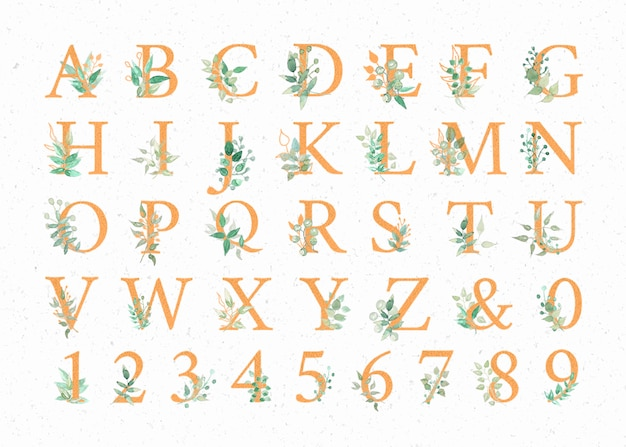 Alphabets aquarelles Vecteur Premium