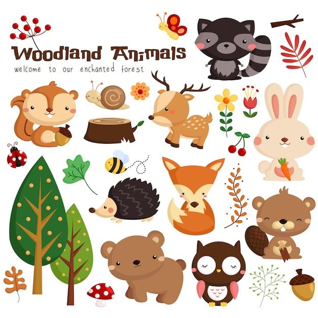 Animal des bois Vecteur Premium