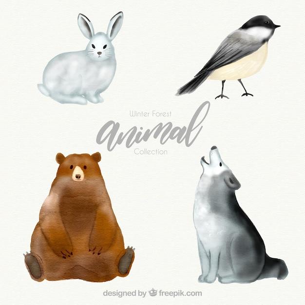 Animal de la forêt d'hiver Vecteur gratuit