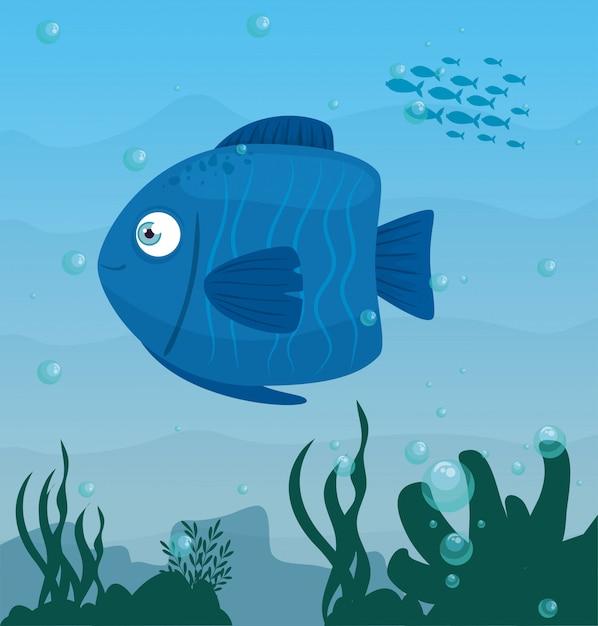 Animal Poisson Bleu Dans L'océan, Habitant De Seaworld, Créature Sous-marine Mignonne, Faune Sous-marine, Concept Marin D'habitat Vecteur Premium