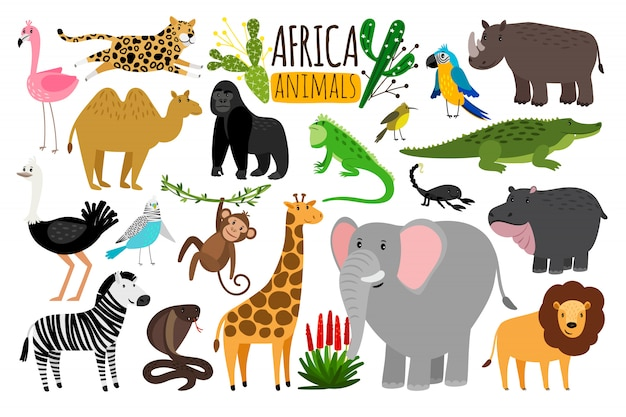 Animaux africains Vecteur Premium