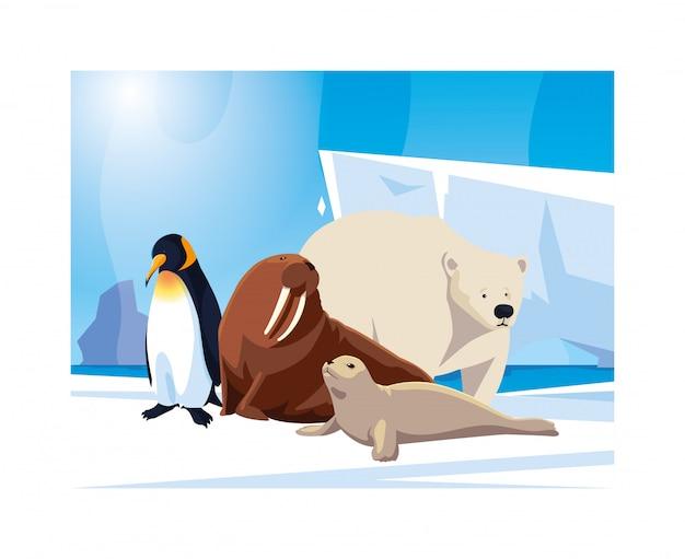 Animaux De L'arctique Au Pôle Nord Vecteur Premium