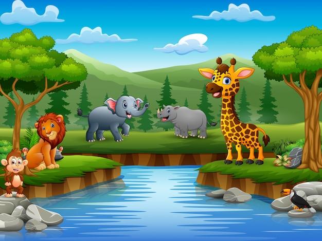 Animaux de bande dessinée profitent de la nature au bord de la rivière Vecteur Premium