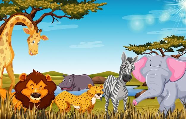 Animaux dans l'illustration de la scène safari Vecteur Premium
