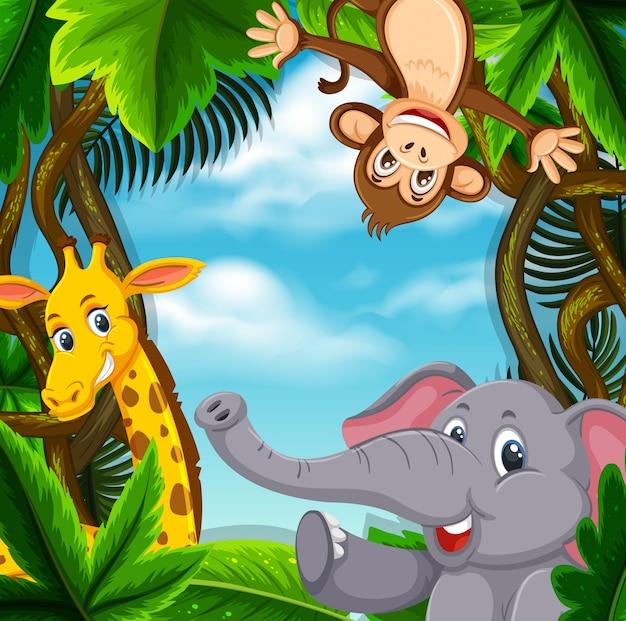 Animaux dans la jungle Vecteur Premium