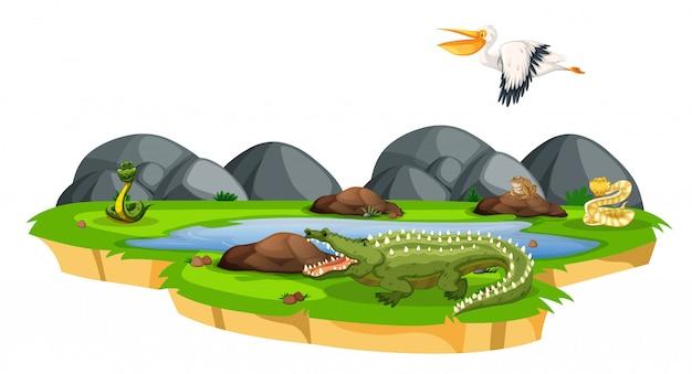 Animaux dans la nature Vecteur gratuit