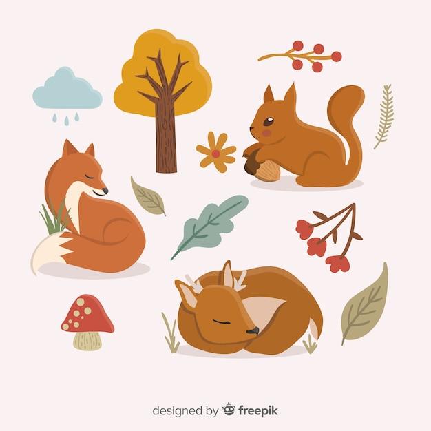 Animaux de la forêt automne dessinés à la main Vecteur gratuit