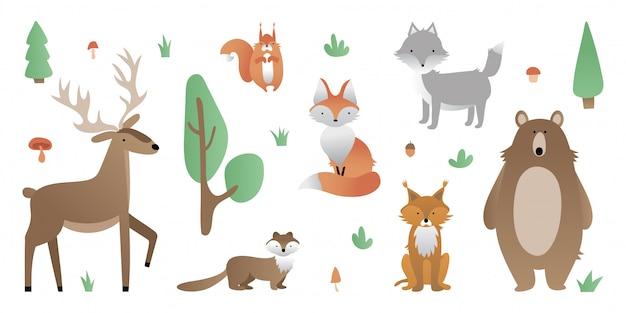 Animaux de la forêt. ours, loup, renard, cerf, lynx, écureuil, martre. arbre, arbuste, herbe, champignon, gland. Vecteur Premium