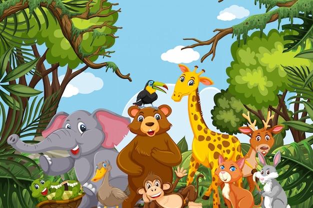 Animaux de la jungle dans une scène de natue Vecteur Premium