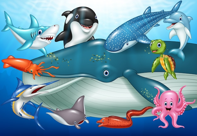 Animaux marins de dessin animé Vecteur Premium