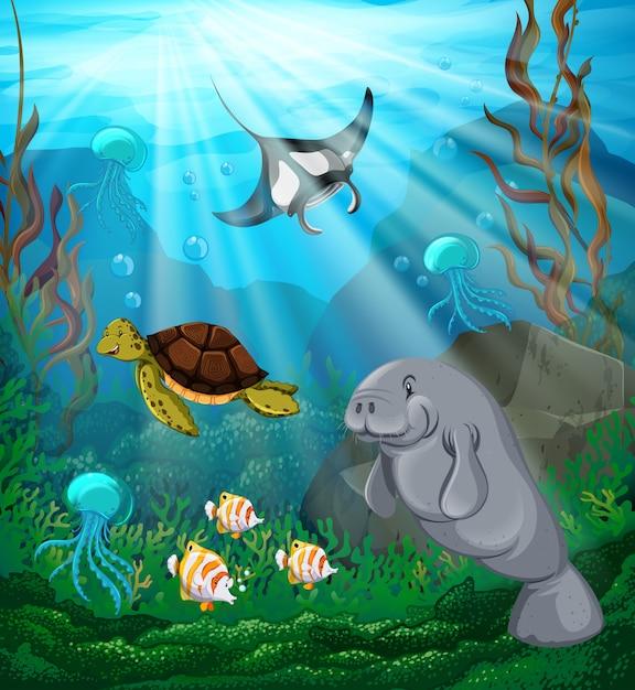 Animaux marins nageant sous l'océan Vecteur gratuit