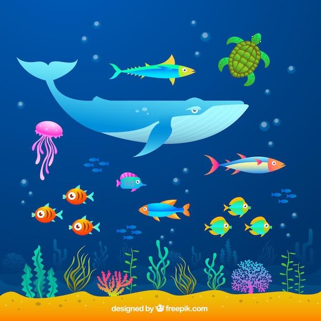 Les Animaux De La Mer Vecteur gratuit