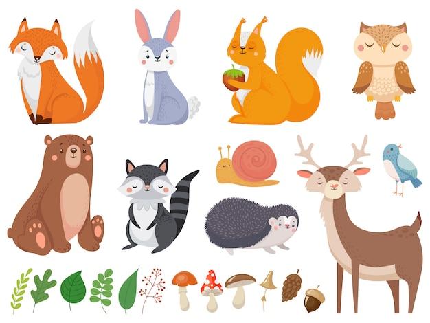 Animaux Mignons Des Bois. Ensemble D'animaux Sauvages, De La Flore Et De La Faune Des Animaux Sauvages Ensemble D'illustration Vecteur Premium