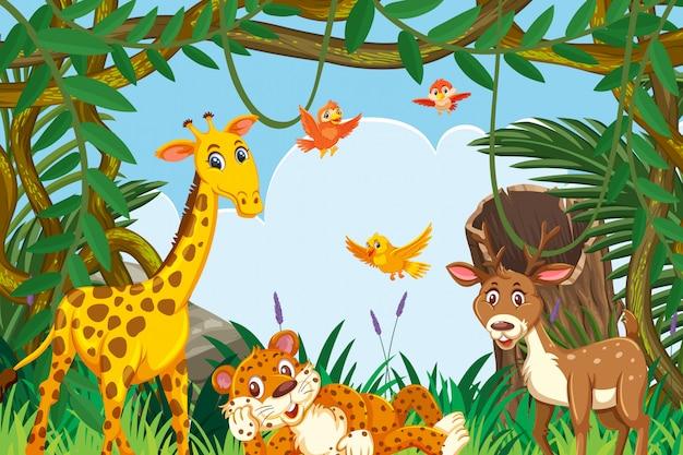 Animaux mignons dans la scène de la jungle Vecteur Premium