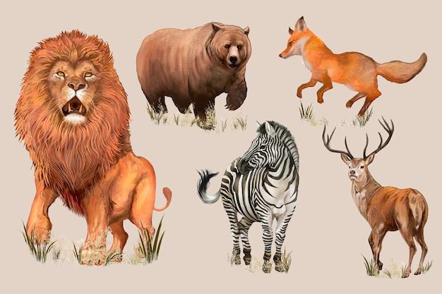 Animaux sauvages dessinés à la main Vecteur gratuit