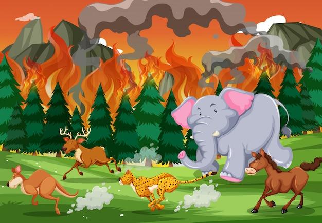 Les animaux sauvages fuient un feu de forêt Vecteur gratuit