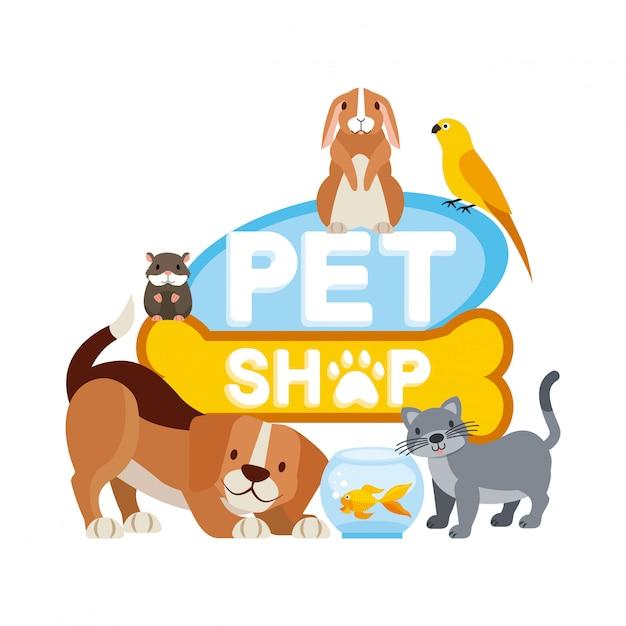 Animaux et vétérinaire Vecteur gratuit