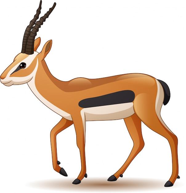 Antilope de dessin anim isol sur fond blanc t l charger des vecteurs premium - Gazelle dessin ...
