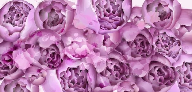 Aquarelle de carte de fleurs de pivoine pourpre Vecteur Premium