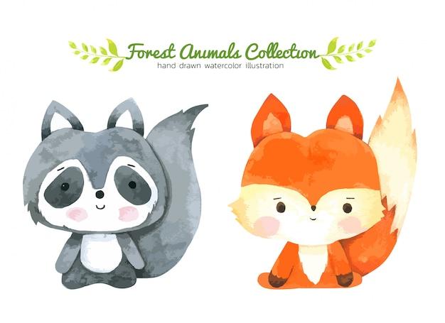 Aquarelle cartoon fox et raton laveur, personnage de forêt dessiné à la main des animaux des forêts Vecteur Premium