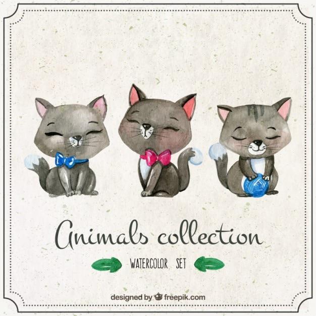 Aquarelle chatons mignons Vecteur gratuit