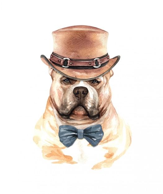 Aquarelle de chien american bully avec costume. Vecteur Premium