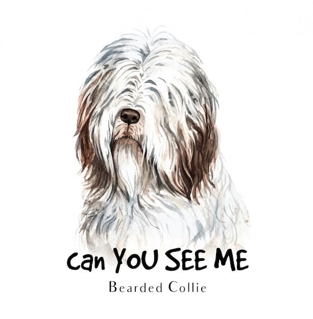 Aquarelle de chien bearded collie pour l'impression. Vecteur Premium