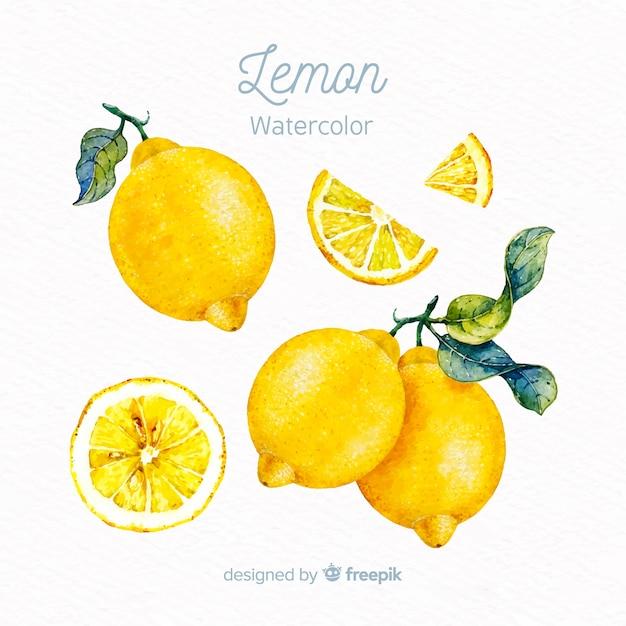 Aquarelle citron Vecteur gratuit