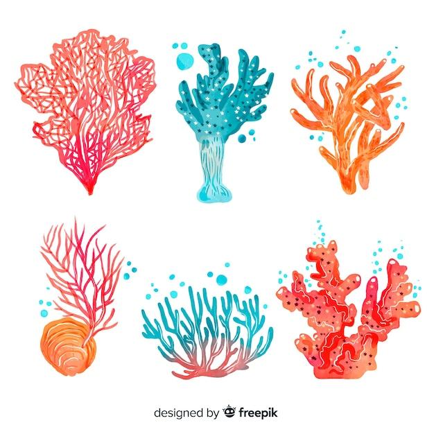 Aquarelle collection de coraux Vecteur gratuit