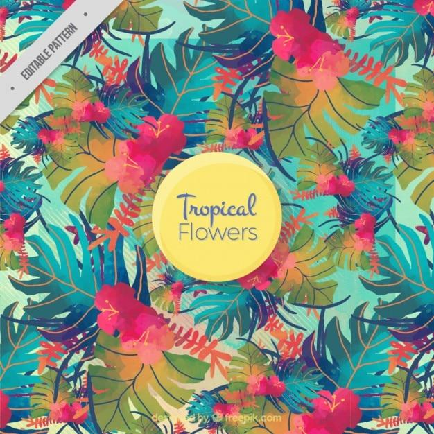 Aquarelle feuilles colorées motif tropical Vecteur gratuit