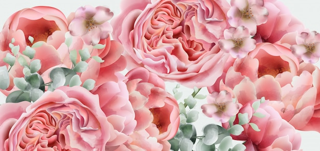 Aquarelle de fleurs de printemps pivoines Vecteur Premium