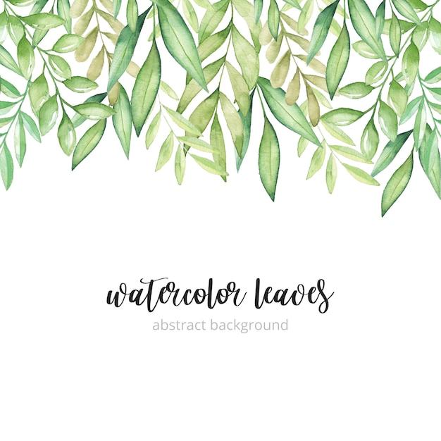 Aquarelle fond de feuilles vertes Vecteur Premium