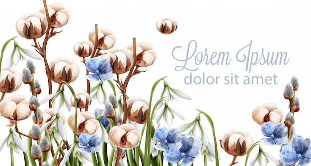 Aquarelle de fond de fleurs de coton Vecteur Premium