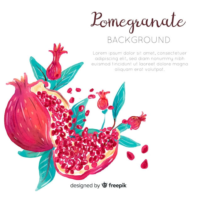 Aquarelle fond grenade Vecteur Premium