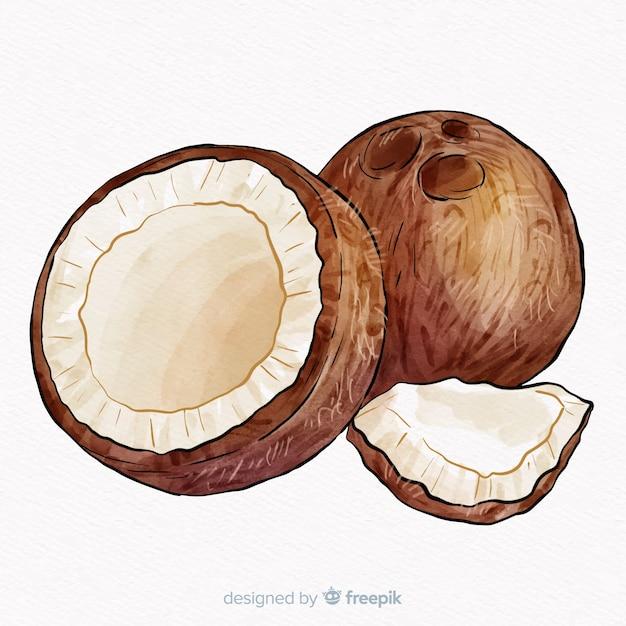 Aquarelle fond de noix de coco Vecteur gratuit