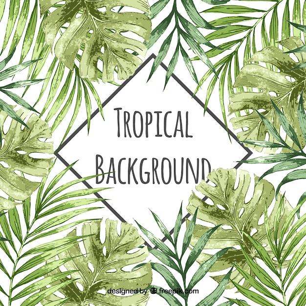 Aquarelle fond tropical avec style vintage Vecteur gratuit