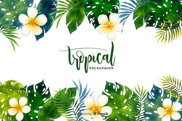 Aquarelle Fond Tropical Vecteur Premium