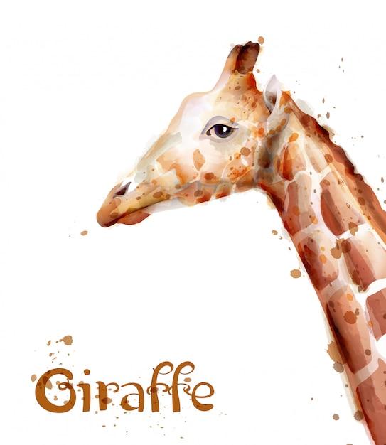 Aquarelle girafe Vecteur Premium