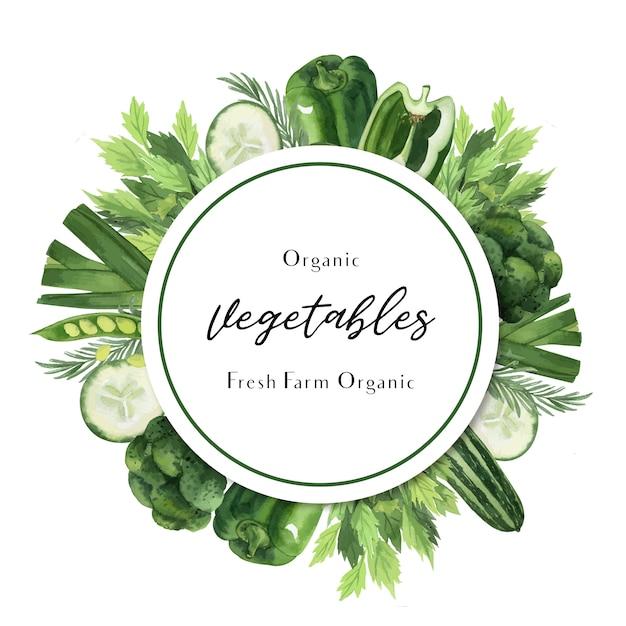 Aquarelle de légumes verts affiche ferme bio idée de menu, conception organique saine Vecteur gratuit