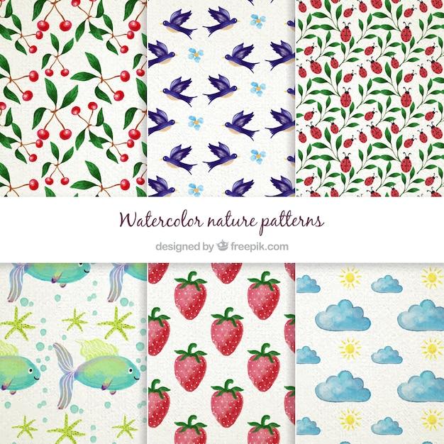 Aquarelle nature motif collection Vecteur gratuit