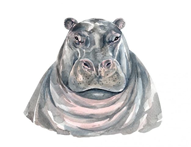 Aquarelle portrait d'hippopotame pour l'impression. Vecteur Premium