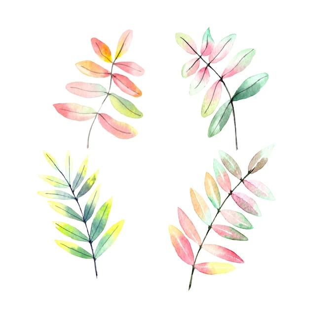 Aquarelle réaliste ensemble de feuilles d'automne Vecteur Premium