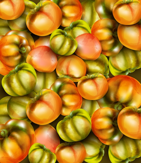 Aquarelle de tomates vertes Vecteur Premium