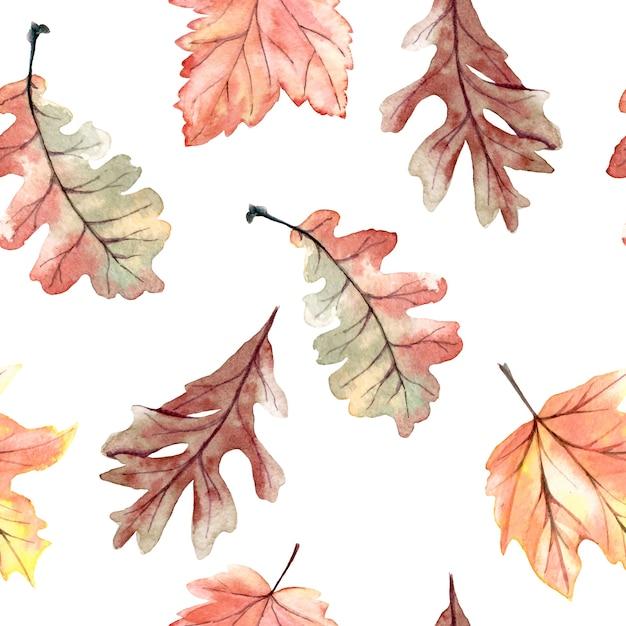 Aquarelle transparente motif avec des feuilles d'automne Vecteur Premium