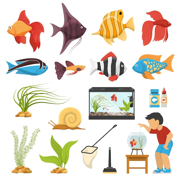 Aquaristics aquarium fish set Vecteur gratuit