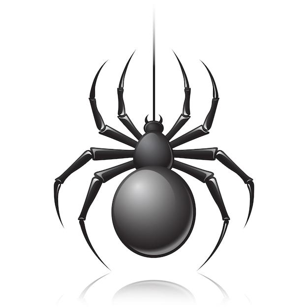 Araignée noire Vecteur gratuit